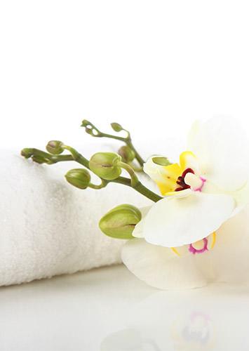 Notre institut de beauté vous offre un moment de bien-être à travers nos diverses prestations. à Porto Vecchio